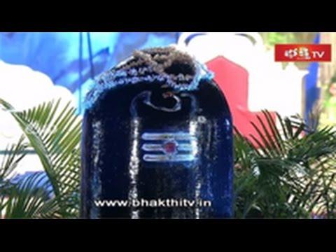 Fourth Day Celebrations of BhakthiTv Koti Deepothsavam 2014_Part 1