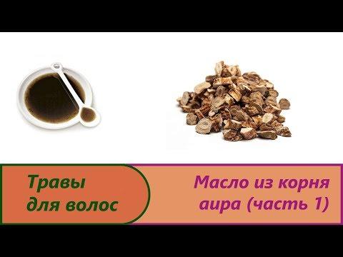 Масло на корне аира ч 1. Изготовление болотного аира от перхоти и для роста длинных и красивых волос