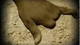 Acidentes de Trabalho - Vulcabras Azaleia - Domingo Espetacular