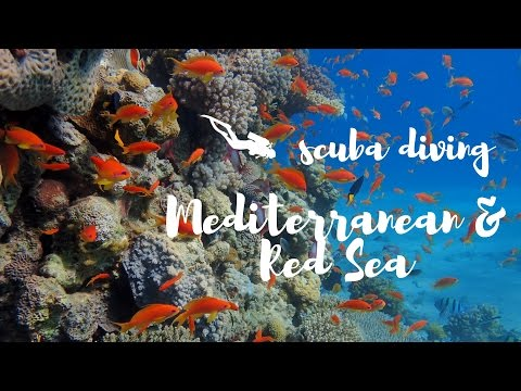 SCUBA DIVING IN MEDITERRANEAN AND RED SEA_Merülő helyek