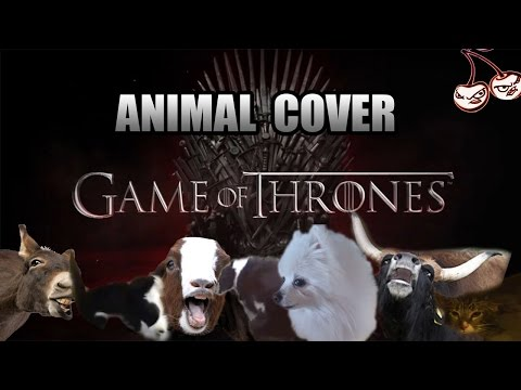 Animals Sing the Game of Thrones Theme Song