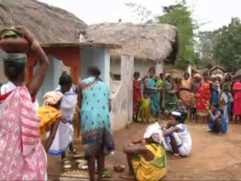 Video Live video on tribal marriage culture in koraput district download in MP3, 3GP, MP4, WEBM, AVI, FLV January 2017