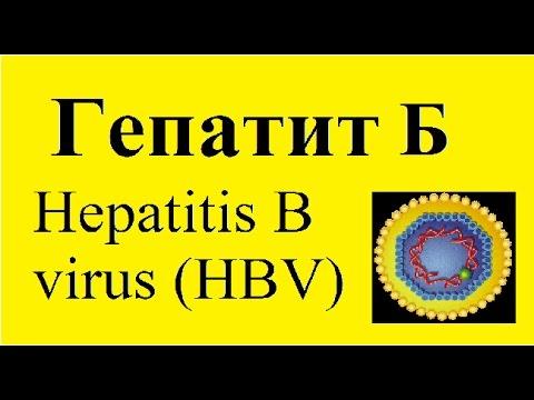 ГЕПАТИТ Б. Вирусный гепатит Б.
