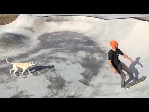 Curtis Marshall Memorial Skatepark, Peace River, Alberta