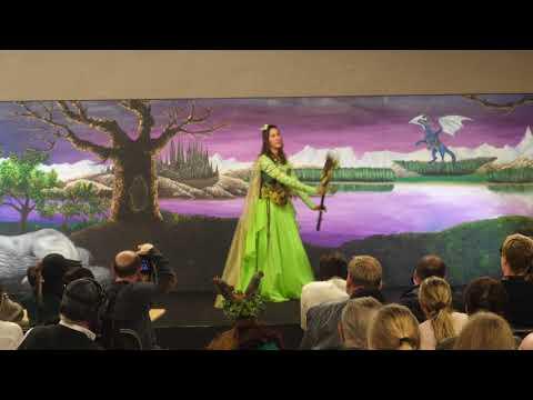 Salon Fantastique novembre 2017- Concours Costume - Vendredi - 07 -fée des bois (créa perso)