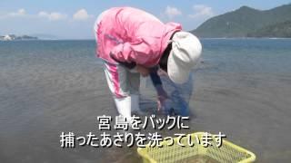 旅レポ【広島県】厳島神社で潮干狩りを楽しむ!