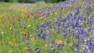 Brownwood (TX) United States  city photos : Brownwood, Texas