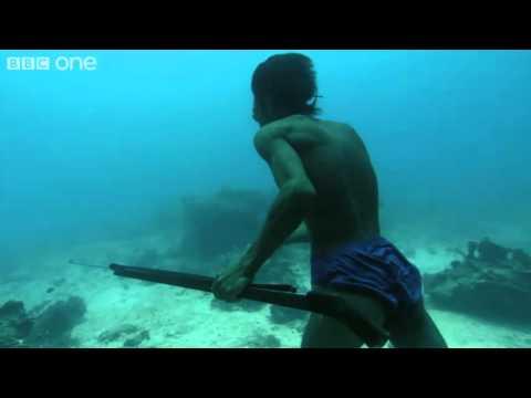 hombre de pesca andando bajo el mar, increible! Human Planet Oceans BBC HD 1080