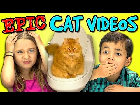 kids - SUBSCRIBE to the REACT Channel: http://goo.gl/47iJqh All REACT channel videos from this week - http://goo.gl/z3DNwn Vote for your favorite cat videos at https://www.TheFriskies.com The Kids...