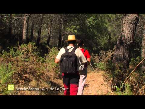 Der Große Wanderweg Málagas. Etappe 34: Benalmádena – Alhaurín de la Torre (Deutsch)