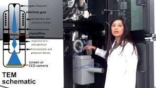 Microscops - Transmission Electron Microscope