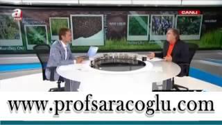 Prof. Dr. İbrahim Saraçoğlu Hayat Kürleri Prostat Kanseri Tedavisinde Faydalı Besin