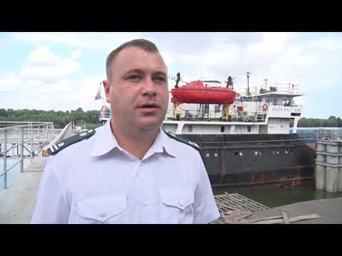 О досмотре подкарантинной продукции, предназначенной на экспорт в Ростовской области