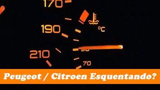 Teste de temperatura do motor 1.4 8V do Peugeot 206, neste video mostraremos que nem sempre o aquecimento do motor acima de 90 graus significa algum ...