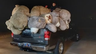 Video Filled our house with World's Largest Teddy Bears! MP3, 3GP, MP4, WEBM, AVI, FLV Juni 2019