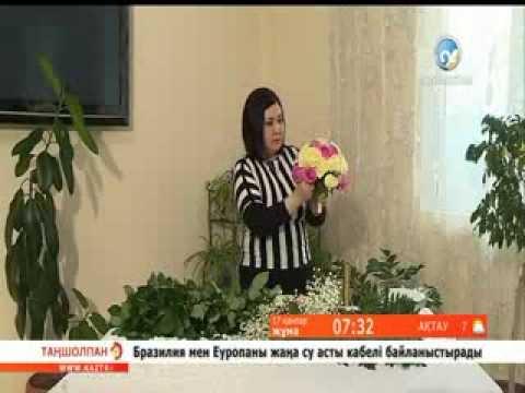 баклашкадан