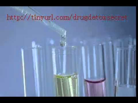 how to properly dilute urine for drug test