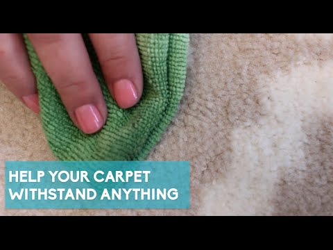 4 Hacks To Clean And Freshen Your Carpets With Items You