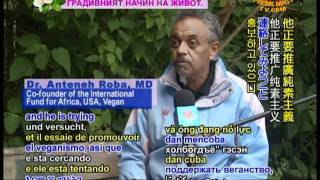 Dr. Anteneh Roba And The International Fund For Africa: Caring For (In Amharic) (2/2)