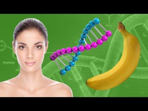 10 МАЛОИЗВЕСТНЫХ ФАКТОВ О ДНК