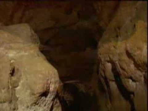 lascaux caves - Check out the Lascaux cave, sort of...