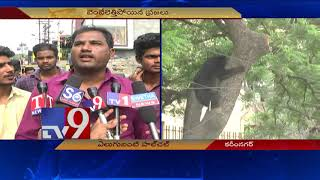 Video Wild Bear hulchul in BSNL office at Karimnagar, Caught by rescue team - TV9 MP3, 3GP, MP4, WEBM, AVI, FLV Desember 2018