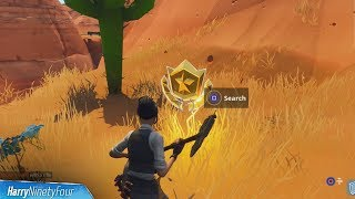 Search between an Oasis, Rock Archway & Dinosaurs Challenge Location Guide - Fortnite Battle Royale