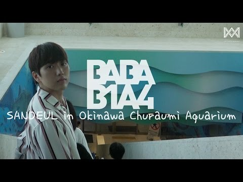 [BABA B1A4 2] EP.19 SANDEUL in Okinawa Churaumi Aquarium