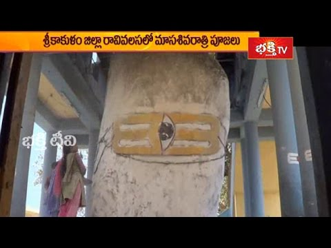 Masa Shivaratri Worships to Endala Mallikarjuna in Ravivalasa in Srikakulam District