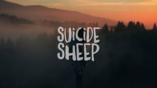PETIT BISCUIT - Sunset Lover - YouTube