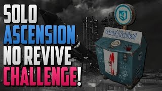 Today I will be attempting the no revive world record challenge. As of right now the world record is 191 but maybe today there will be a new record holder ;)All donations appreciated!Tip jar - https://youtube.streamlabs.com/kingse7enWe're currently playing Black Ops Zombies on the PCComputer Specs:CPU: Intel Core i5-4690k 3.50@GHzGPU: NVIDIA GeForce GTX 980TI (FE)RAM: 8GB Corsair ValueSelectSSD: Samsung Evo 750 250GBOperating System: Windows 10If we cannot break the world record then maybe we can even get our name on the Leaderboards :)