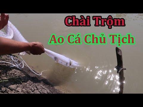 Võ Minh Phụng : Chài Trộm Cái Ao Chủ Tịch Và Cái Kết | Miền Tây Sông Nước - Thời lượng: 15 phút.