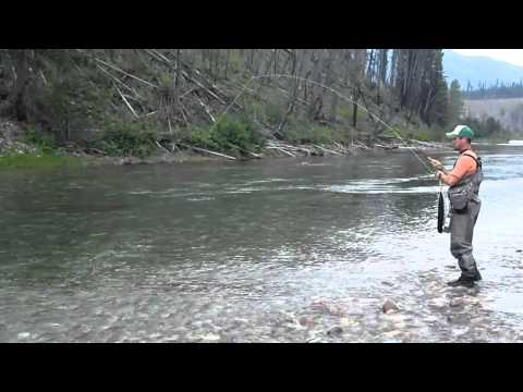 Fly Fishing Native Westslope Cutthroat Trout