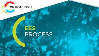 EES Process