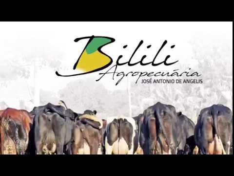 Agropecuária Bilili Animais