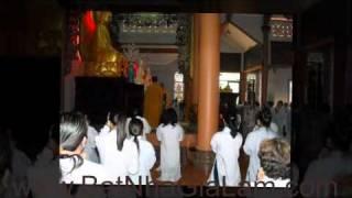 Phật Đản Trong Ta - Cảnh Thọ Bát Quan Trai Tại Chùa Bát Nhã