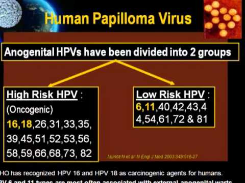HPV and Genital Wart Part 1