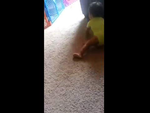 Too Funny: One Year Baby Video