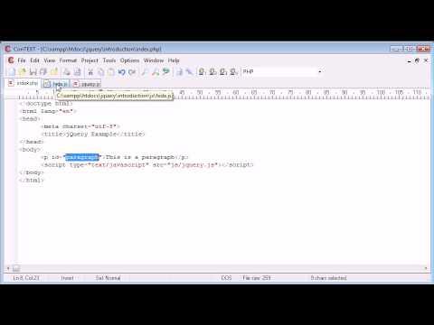 Inline/External Scripting