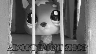 Download Lagu LPS ADOPT DONT SHOP Mp3