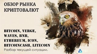 Bitcoin, Verge, Waves, BNB, Ethereum, ICON, BitcoinCash, Litecoin. Разбор текущей ситуации.
