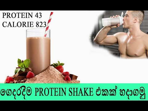 How To Make Protein Shake at Home - Sinhala