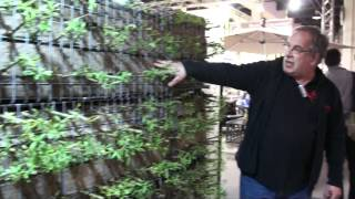 #562 Giardina 2012 - Die grüne Wand