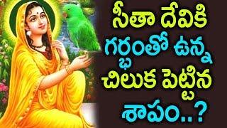 Video గర్బంతోఉన్న చిలుక సీతాదేవికి పెట్టిన శాపంThe mystery of why Rama exiled Sita to the forest | sumantv MP3, 3GP, MP4, WEBM, AVI, FLV Maret 2019