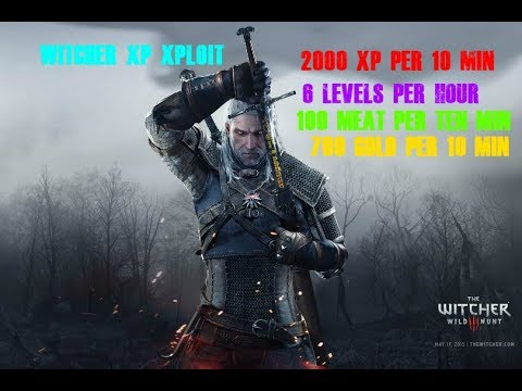 Witcher 3 -  BEST XP GLITCH! / 2000 XP PER 10 MINUTES! AND GOLD (Blood & Wine Only)