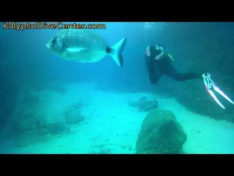 Scuba Diving @ Kalypso Dive Center South Crete GREECE May-July 2018_Búvárkodás