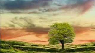 Video Ernesto Cortazar - Sicilian  Romance MP3, 3GP, MP4, WEBM, AVI, FLV Agustus 2018