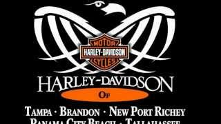 7. Used 2005 Harley Davidson Sportster 883 Custom Motorcycles for sale