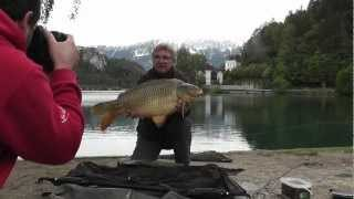 Bled Slovenia  City pictures : Carp Fishing - Free Spirit Shaun Harrison At Lake Bled Slovenia