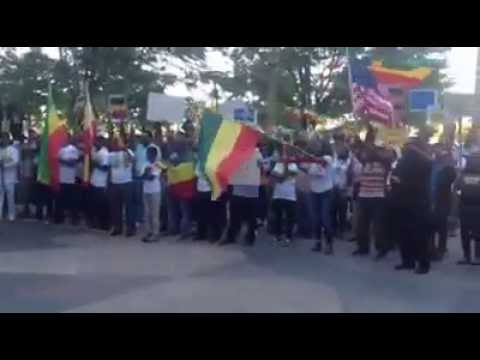 Congressman Mike Coffman (CO) stands with Ethiopian Protests in Denver, CO